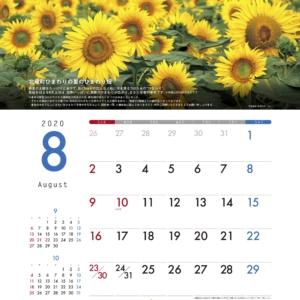 大樹生命保険株式会社(本社:東京)発行の8月カレンダー(ポスター)にて北竜町ひまわりの里をご紹介いただきました