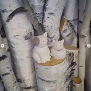 自然下さん から最高に美しい白樺の原木を 提供していただきました【ういるびい工房(深川市)】