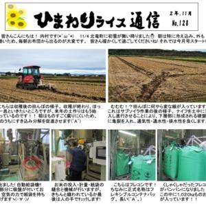 ひまわりライス通信 No.128・令和2年11月【JAきたそらち北竜支所】