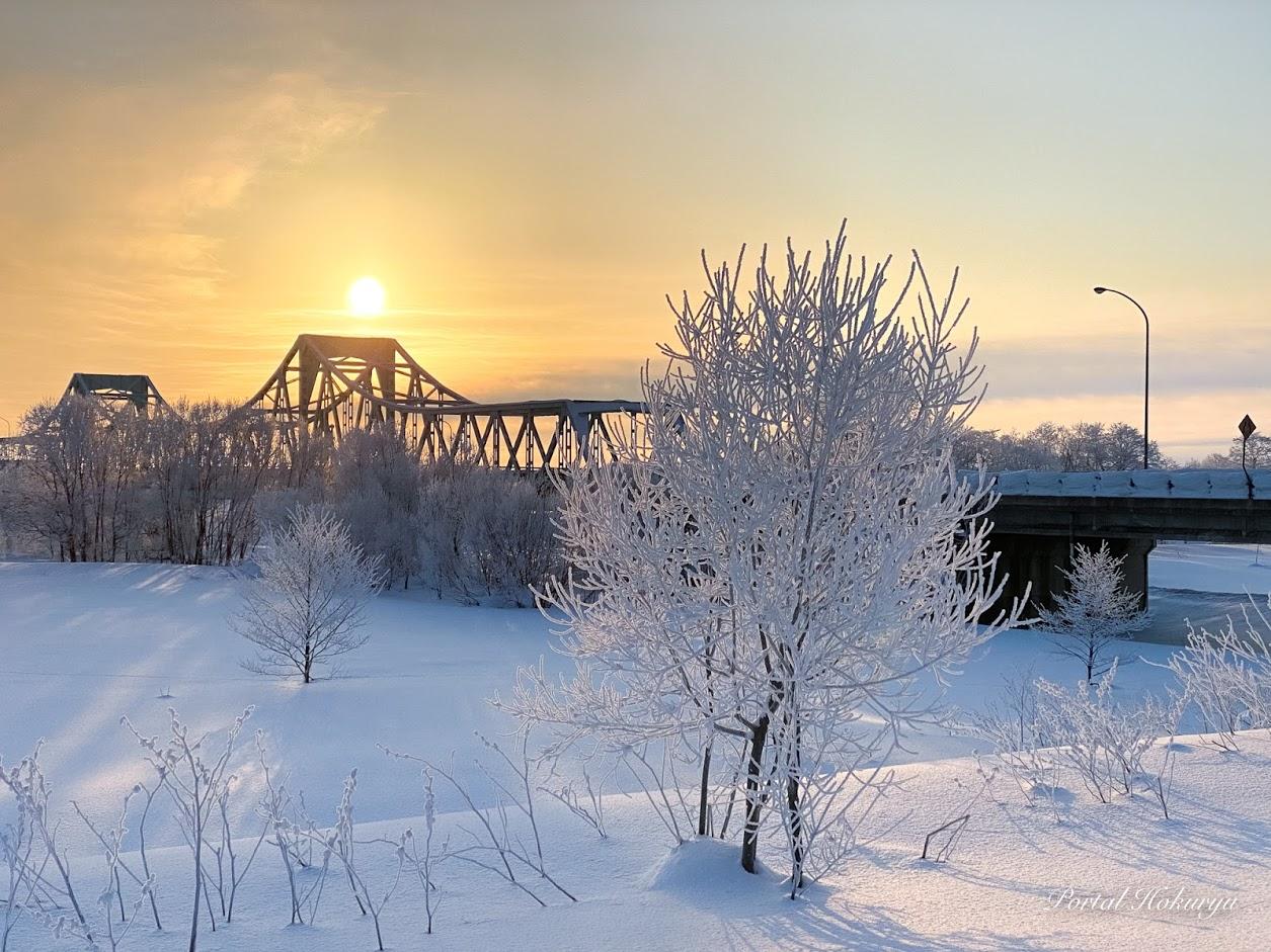 樹氷が奏でる風景
