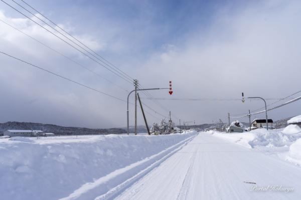 真っ直ぐに続く雪道