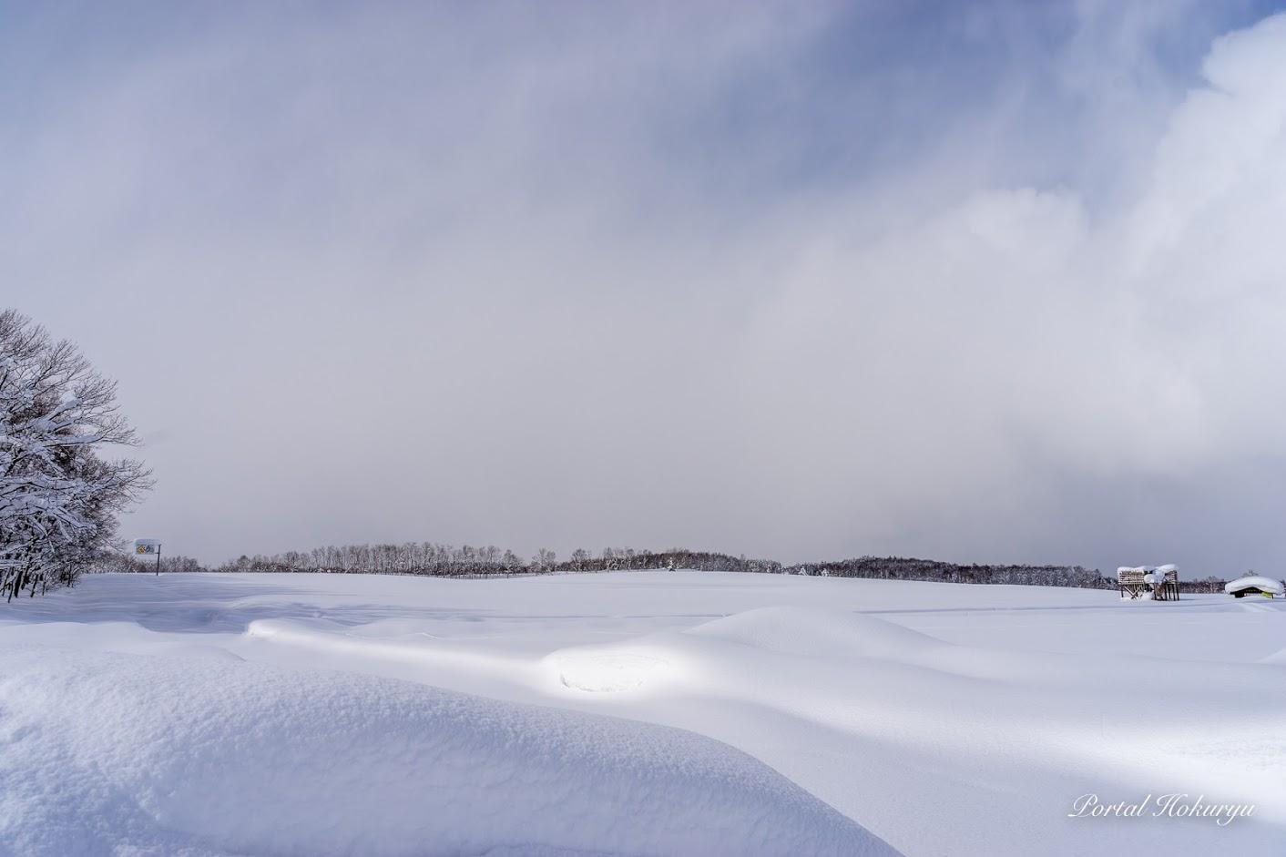 ひまわりの里の雪景色