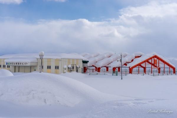 雪を被るB&G海洋センター