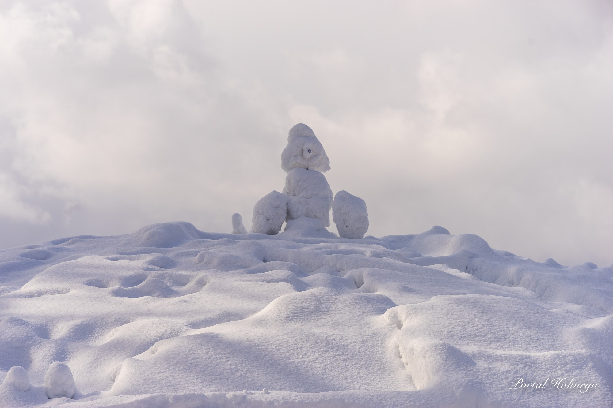 頂上に設置された雪像