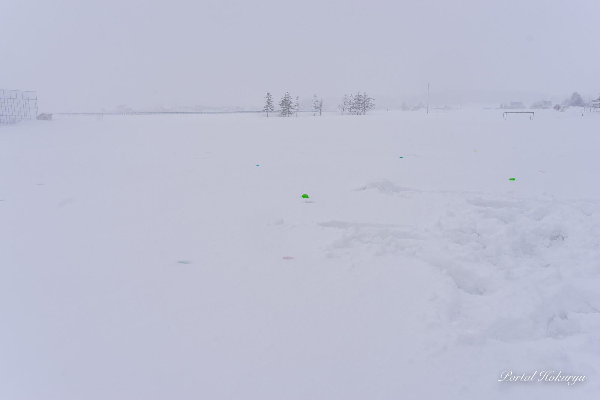 雪原に散らばるカラーボール