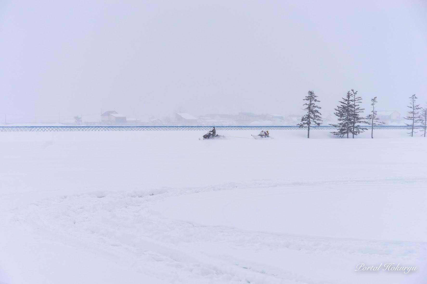 雪原を走り抜けて。。。