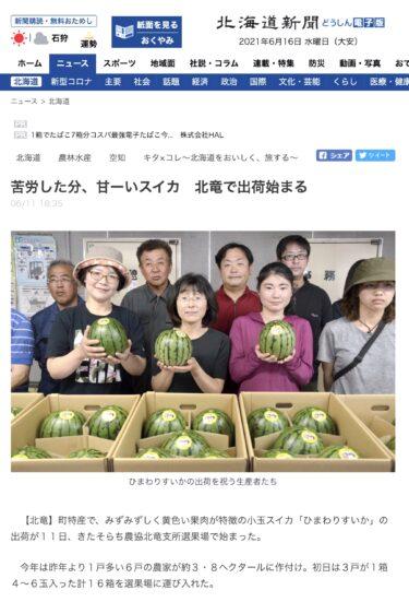 苦労した分、甘ーいスイカ 北竜で出荷始まる【北海道新聞】